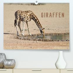 Giraffen (Premium, hochwertiger DIN A2 Wandkalender 2021, Kunstdruck in Hochglanz) von Pavlowsky Photography,  Markus