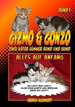 Gizmo & Gonzo – zwei Kater außer Rand und Band von Schmidt,  Boris