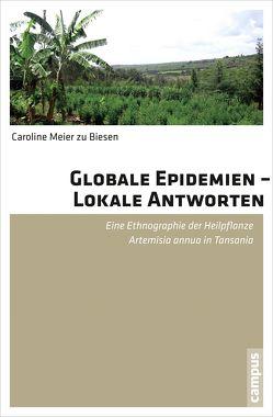 Globale Epidemien – Lokale Antworten von Meier zu Biesen,  Caroline