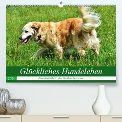 Glückliches Hundeleben (Premium, hochwertiger DIN A2 Wandkalender 2020, Kunstdruck in Hochglanz) von Glineur,  Jean-Louis