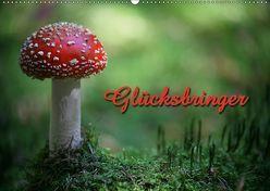 Glücksbringer (Wandkalender 2019 DIN A2 quer) von Berg,  Martina