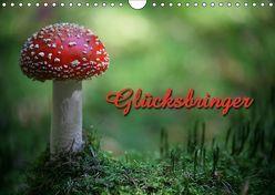 Glücksbringer (Wandkalender 2019 DIN A4 quer) von Berg,  Martina