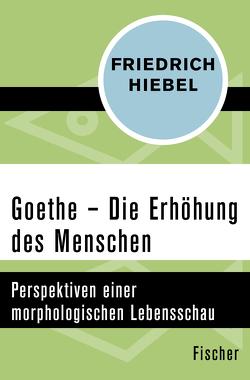 Goethe von Hiebel,  Friedrich