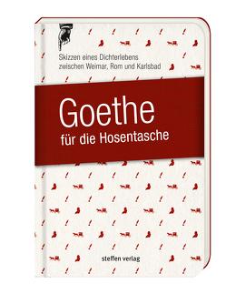 Goethe für die Hosentasche von Seyfarth,  Göran