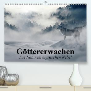 Göttererwachen. Die Natur im mystischen Nebel (Premium, hochwertiger DIN A2 Wandkalender 2020, Kunstdruck in Hochglanz) von Stanzer,  Elisabeth