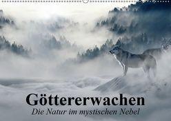 Göttererwachen. Die Natur im mystischen Nebel (Wandkalender 2019 DIN A2 quer) von Stanzer,  Elisabeth