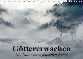 Göttererwachen. Die Natur im mystischen Nebel (Wandkalender 2019 DIN A4 quer) von Stanzer,  Elisabeth