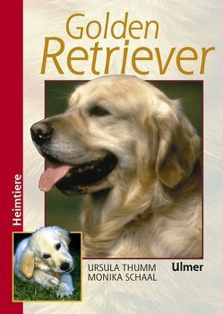 Golden Retriever von Schaal,  Monika, Thumm,  Ursula