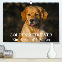 Golden Retriever – Ein Herz auf 4 Pfoten (Premium, hochwertiger DIN A2 Wandkalender 2021, Kunstdruck in Hochglanz) von Starick,  Sigrid