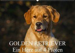 Golden Retriever – Ein Herz auf 4 Pfoten (Wandkalender 2018 DIN A2 quer) von Starick,  Sigrid