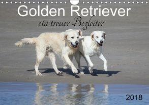 Golden Retriever ein treuer Begleiter (Wandkalender 2018 DIN A4 quer) von SchnelleWelten