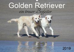 Golden Retriever ein treuer Begleiter (Wandkalender 2019 DIN A2 quer) von SchnelleWelten