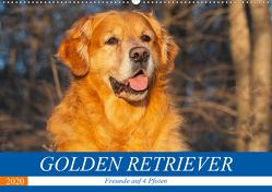 Golden Retriever – Freunde auf 4 Pfoten (Wandkalender 2020 DIN A2 quer) von Starick,  Sigrid