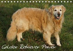 Golden Retriever Power (Tischkalender 2019 DIN A5 quer) von kattobello