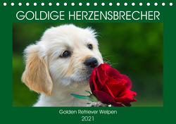 Goldige Herzensbrecher – Golden Retriever Welpen (Tischkalender 2021 DIN A5 quer) von Starick,  Sigrid