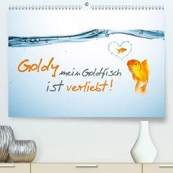 Goldy mein Goldfisch ist verliebt! (Premium, hochwertiger DIN A2 Wandkalender 2020, Kunstdruck in Hochglanz) von rclassen
