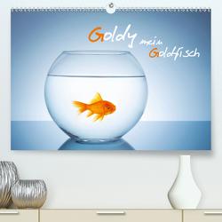 Goldy – mein Goldfisch (Premium, hochwertiger DIN A2 Wandkalender 2021, Kunstdruck in Hochglanz) von rclassen
