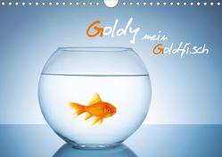 Goldy – mein Goldfisch (Wandkalender 2021 DIN A4 quer) von rclassen