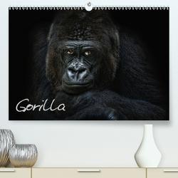 Gorilla (Premium, hochwertiger DIN A2 Wandkalender 2020, Kunstdruck in Hochglanz) von Pinkawa / Jo.PinX,  Joachim