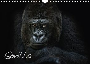 Gorilla (Wandkalender 2018 DIN A4 quer) von Pinkawa / Jo.PinX,  Joachim