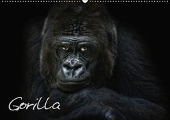 Gorilla (Wandkalender 2019 DIN A2 quer) von Pinkawa / Jo.PinX,  Joachim
