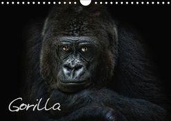 Gorilla (Wandkalender 2019 DIN A4 quer) von Pinkawa / Jo.PinX,  Joachim