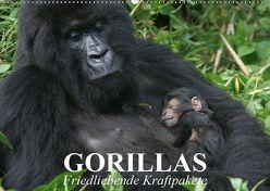 Gorillas. Friedliebende Kraftpakete (Wandkalender 2019 DIN A2 quer) von Stanzer,  Elisabeth