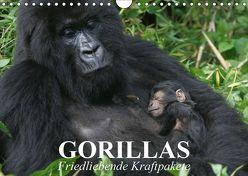 Gorillas. Friedliebende Kraftpakete (Wandkalender 2019 DIN A4 quer) von Stanzer,  Elisabeth