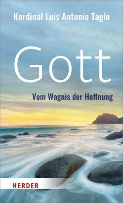 Gott von Stein,  Gabriele, Tagle,  Luis Antonio Gokim
