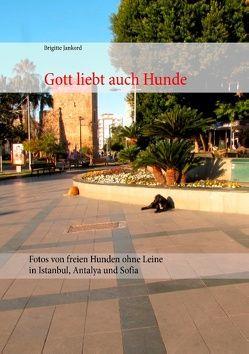 Gott liebt auch Hunde von Jankord,  Brigitte
