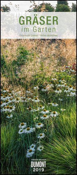 Gräser im Garten 2019 – DUMONT Wandkalender – Garten-Kalender – Hochformat 30,0 x 68,5 cm von Becker Jürgen, DUMONT Kalenderverlag