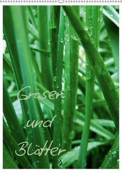 Gräser und Blätter (Wandkalender 2019 DIN A2 hoch) von Otto,  Anja