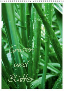 Gräser und Blätter (Wandkalender 2019 DIN A3 hoch) von Otto,  Anja
