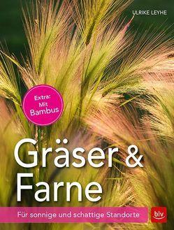Gräser und Farne von Leyhe,  Ulrike