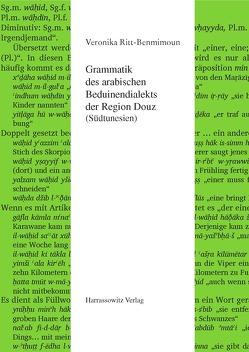 Grammatik des arabischen Beduinendialekts der Region Douz (Südtunesien) von Ritt-Benmimoun,  Veronika
