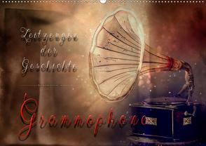 Grammophone – Zeitzeugen der Geschichte (Wandkalender 2020 DIN A2 quer) von Roder,  Peter