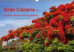 Gran Canaria – zwischen Wüste und Vegetation (Wandkalender 2019 DIN A3 quer) von brigitte jaritz,  photography