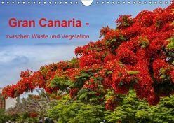 Gran Canaria – zwischen Wüste und Vegetation (Wandkalender 2019 DIN A4 quer) von brigitte jaritz,  photography