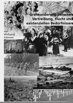 Gratwanderung zwischen Vertreibung, Flucht und existentiellen Bedürfnissen von Adomeit,  Wolfgang