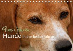 Graue Schnuten – Hunde in den besten Jahren (Tischkalender 2019 DIN A5 quer) von Grüttner,  Kerstin