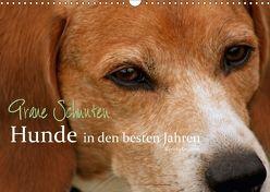 Graue Schnuten – Hunde in den besten Jahren (Wandkalender 2018 DIN A3 quer) von Grüttner,  Kerstin