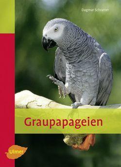 Graupapageien von Schratter,  Dagmar