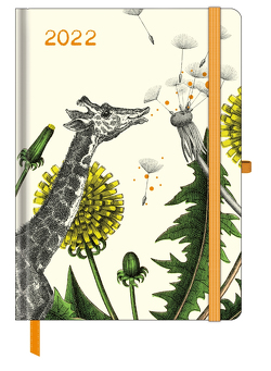 GreenLine Diary Fabulous World of PABUKU 2022 – Buchkalender – Taschenkalender – 16×22