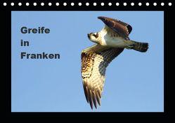 Greife in Franken (Tischkalender 2019 DIN A5 quer) von Bachmeier,  Günter