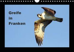 Greife in Franken (Wandkalender 2019 DIN A4 quer)