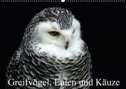 Greifvögel, Eulen und Käuze (Wandkalender 2018 DIN A2 quer) von Klatt,  Arno