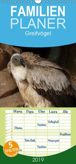 Greifvögel – Familienplaner hoch (Wandkalender 2019 , 21 cm x 45 cm, hoch) von Olschner. Die Aufnahmen entstanden im Wildfreigehege Hellenthal.,  Sabine