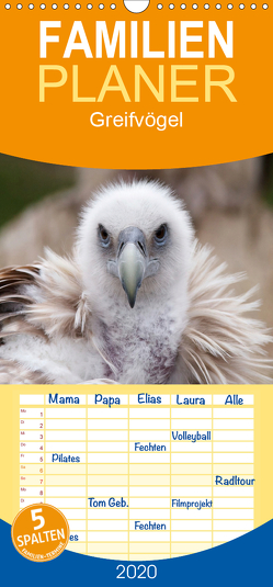 Greifvögel – Familienplaner hoch (Wandkalender 2020 , 21 cm x 45 cm, hoch) von Stanzer,  Elisabeth