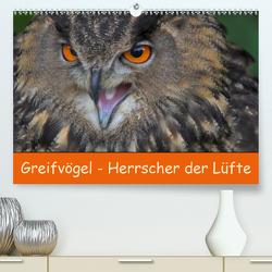 Greifvögel – Herrscher der Lüfte (Premium, hochwertiger DIN A2 Wandkalender 2020, Kunstdruck in Hochglanz) von Wejat-Zaretzke,  Gabriela