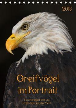 Greifvögel im PortraitAT-Version (Tischkalender 2018 DIN A5 hoch) von Tipka (GUTI-Fotos),  Guido